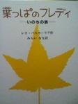 image/2011-10-20T19:34:14-1.jpg