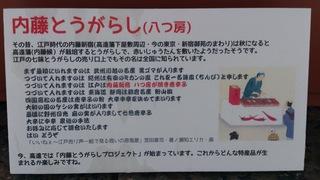 20120708内藤辛子 (1).jpg
