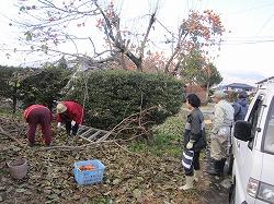 20121118柿 (9)-ss.jpg